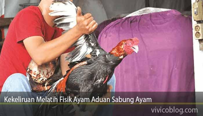Kekeliruan Melatih Fisik Ayam Aduan Sabung Ayam
